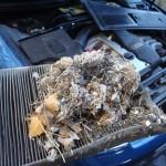 autoklima filtar